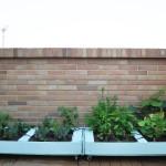 DIY: Cómo hacer un huerto urbano con palés