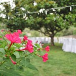 DIY: Una boda handmade