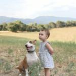 Mascotas que dan vida